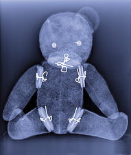Teddy bear, X-ray