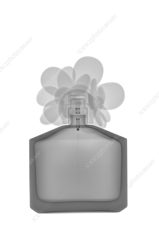 Perfume bottle, X-ray