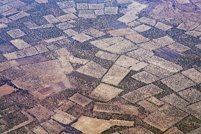 Agricultural fields from the air, Africa