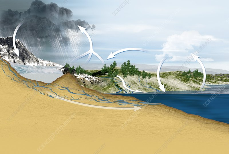 Water cycle diagram stock image c0118414 science photo library water cycle diagram ccuart Image collections