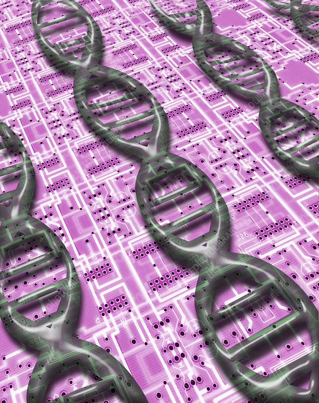 DNA on Circuit Board