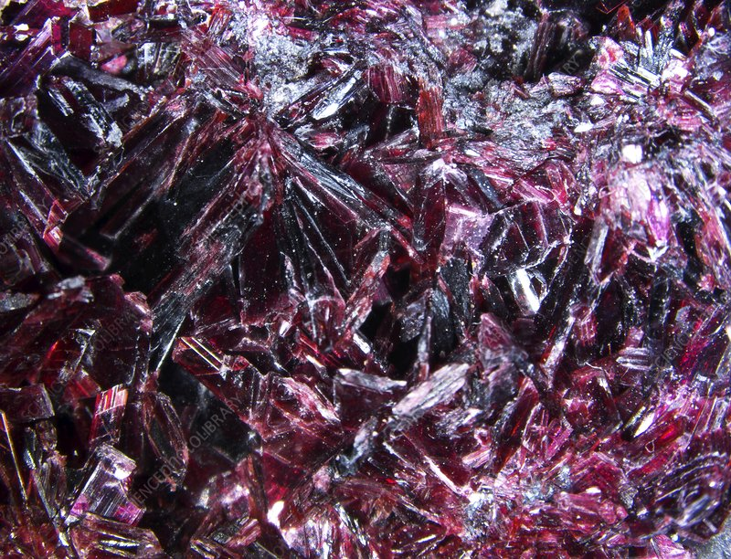 Erythrite crystals, macrophotograph
