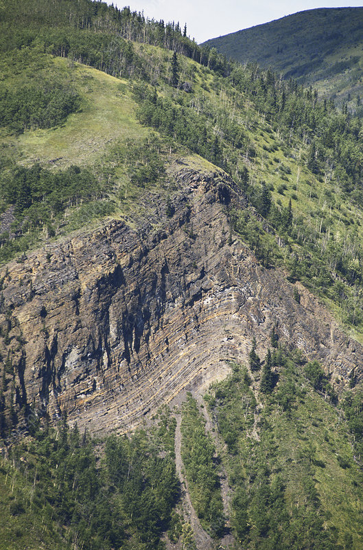Anticline in British Columbia