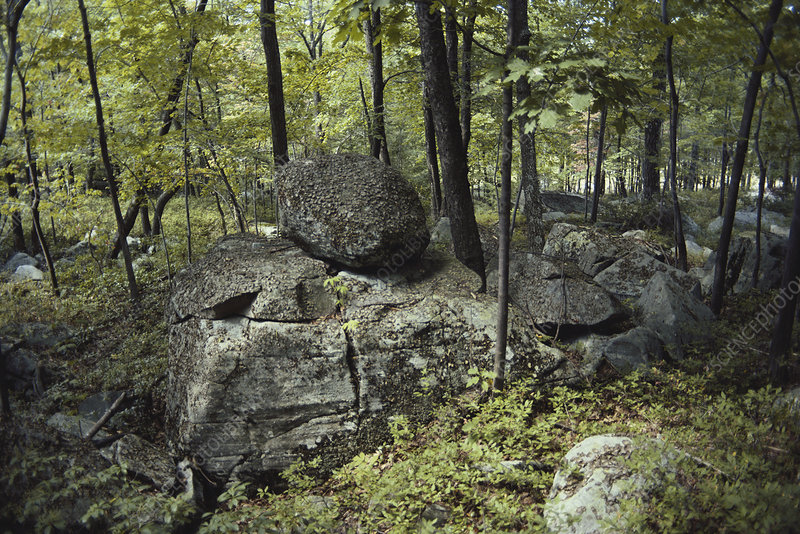 Glacial Erratics, Pennsylvania, USA