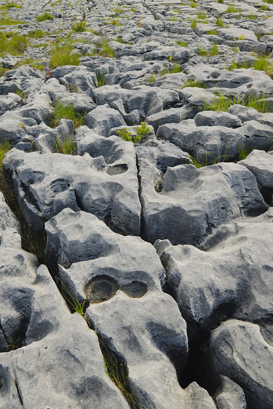 Limestone in The Burren