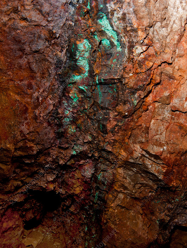Veins of Copper