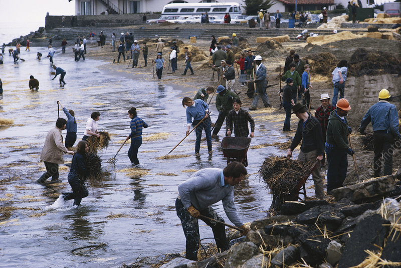 Oil Spill Cleanup, San Francisco, USA