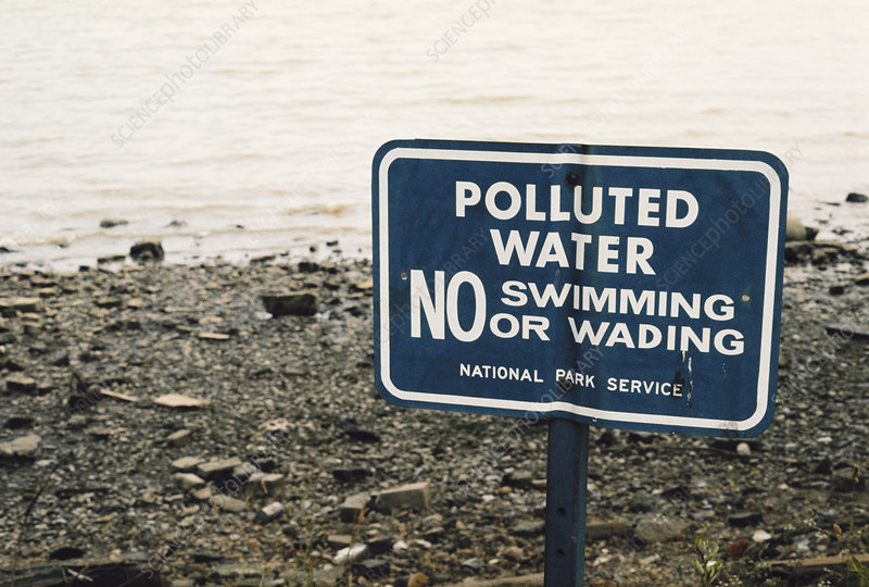 Polluted Potomac River