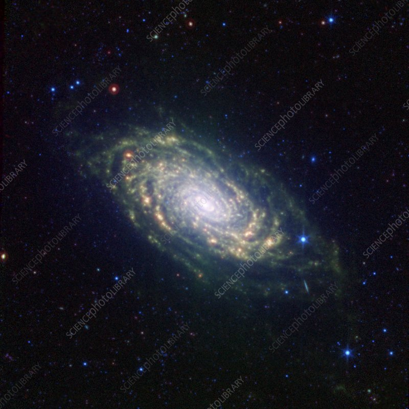 Sunflower Galaxy, infrared image