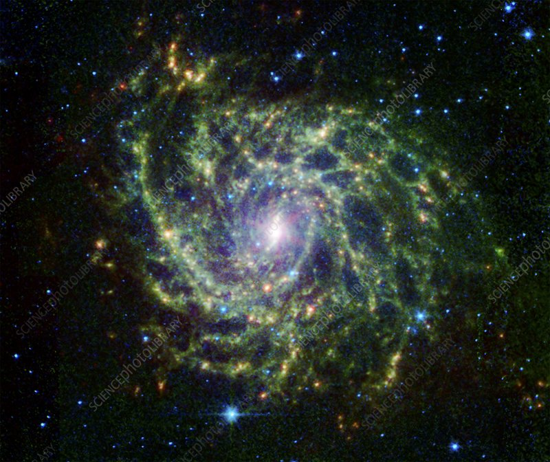 IC 342 spiral galaxy, infrared image