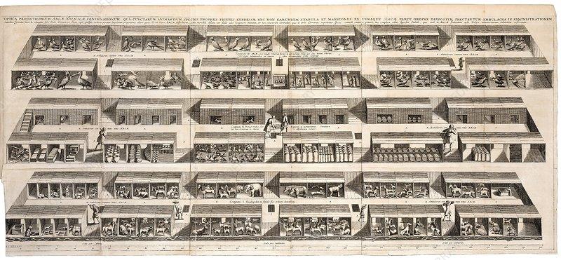 Noah's Ark, 17th-century artwork