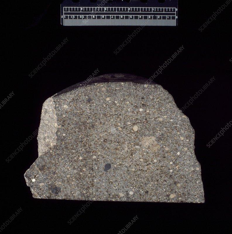 Chondrite meteorite fragment