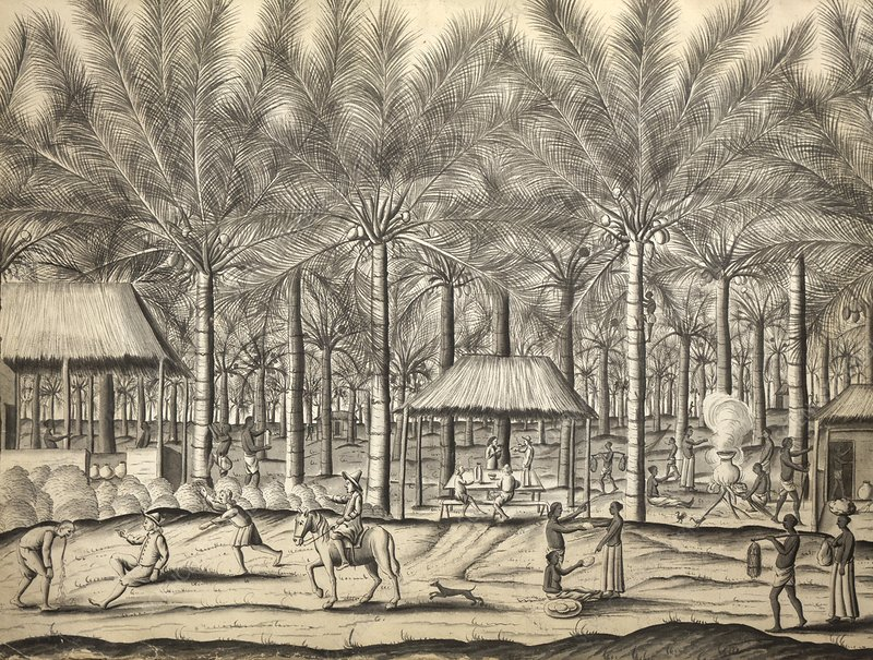 Toddy palm plantation, artwork