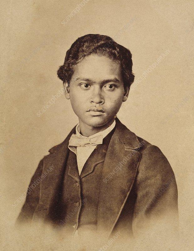 Ali, Alfred Wallace's Malay boy