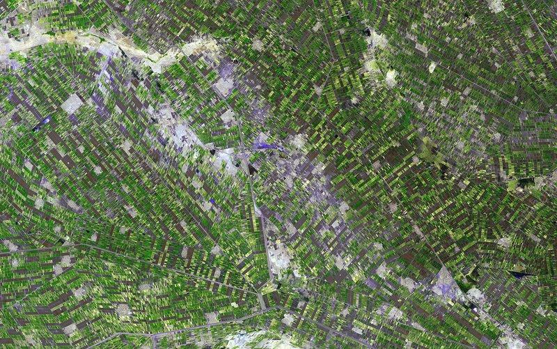 Gezira irrigation scheme, satellite image