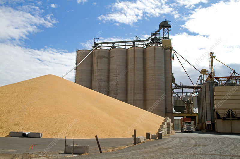 Granary in Lewiston, Idaho, USA