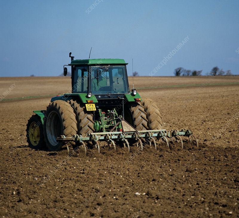 Harrowing Field to prepare Seedbed
