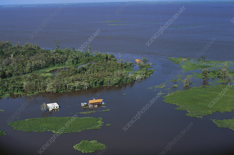 Flooded Houses in Amazon