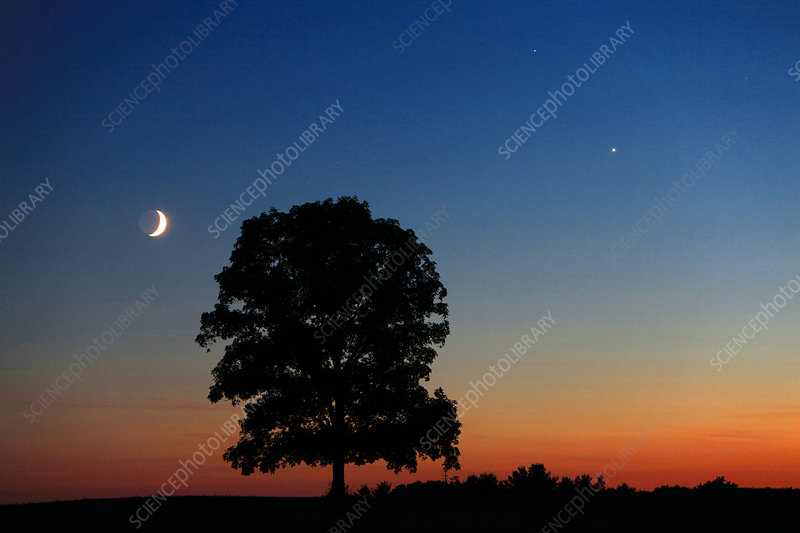 Mars, Venus, and the Moon