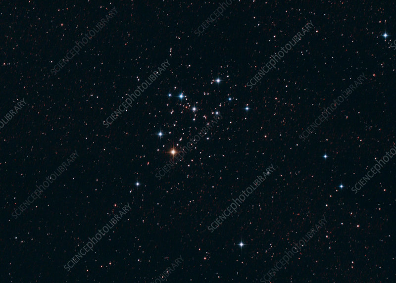 M6 Open Star Cluster