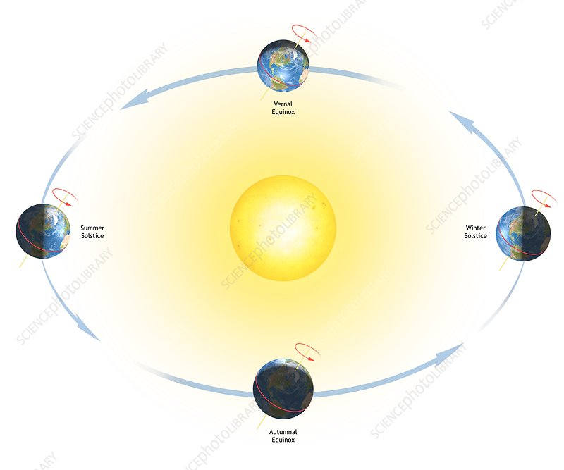 diagram of the earth's seasons - stock image - c012/5187 - science photo  library