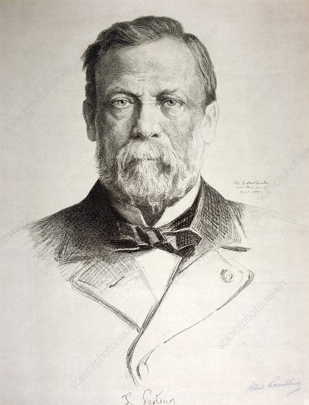 Louis Pasteur French Microbiologist Stock Image C0129238
