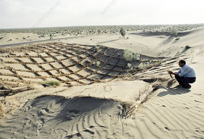 Desert land reclamation project, 1990
