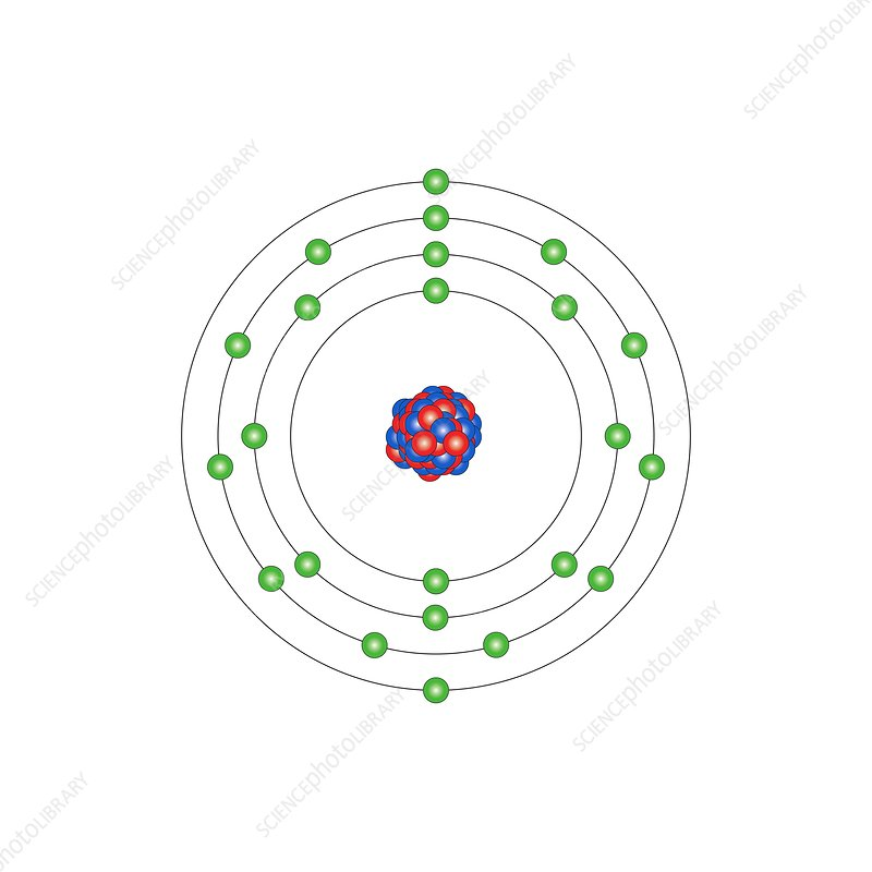 Vanadium Atomic Structure Stock Image C0131536 Science Photo