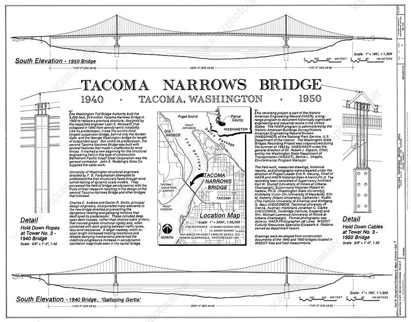 Tacoma Narrows bridges compared