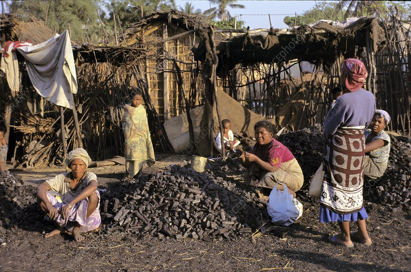 Charcoal sellers, Madagascar
