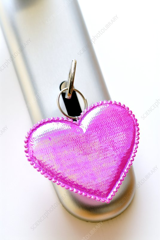 Heart-shaped keyring