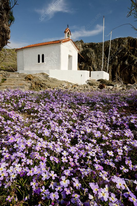 Chapel on Lesvos Island, Greece