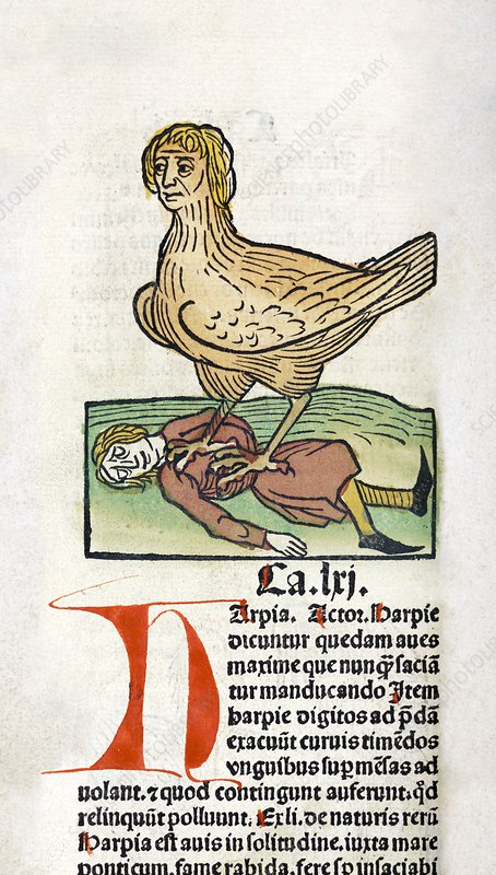 Harpy and prey, 15th century