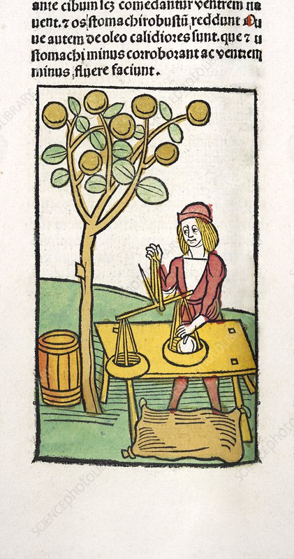 Weighing olives, 15th century