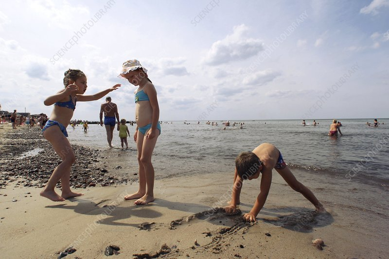 Children playing on a beach