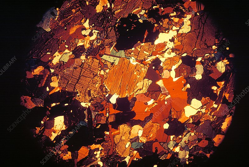 Soil, light micrograph