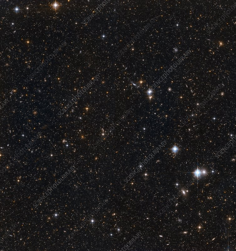 Stars in the Andromeda galaxy, HST image