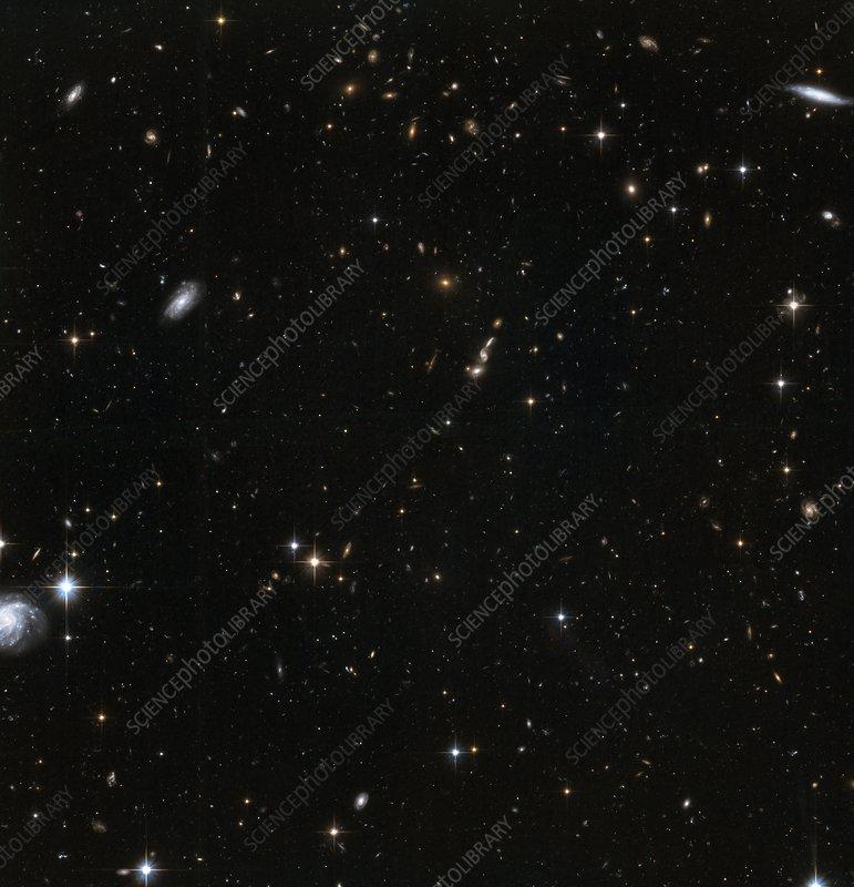 Stars in Andromeda's halo, HST image