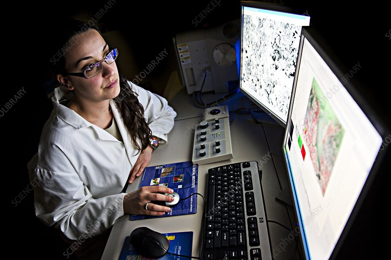 Pathologist viewing microscopic images