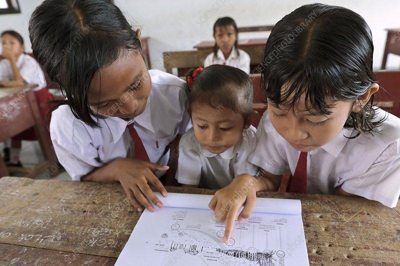Environmental education, Indonesia