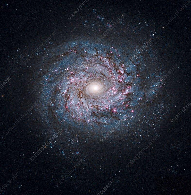 Spiral galaxy, HST image