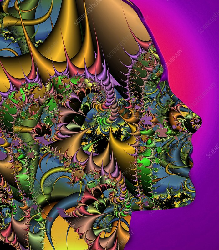 Fractal pattern and human face
