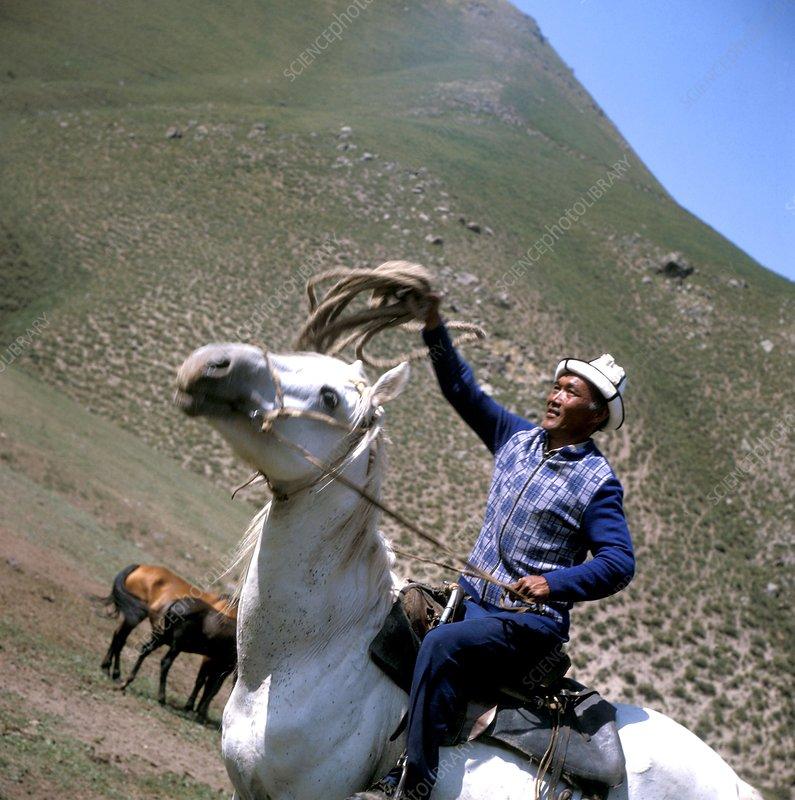 Kyrgyz herder, Kyrgyzstan