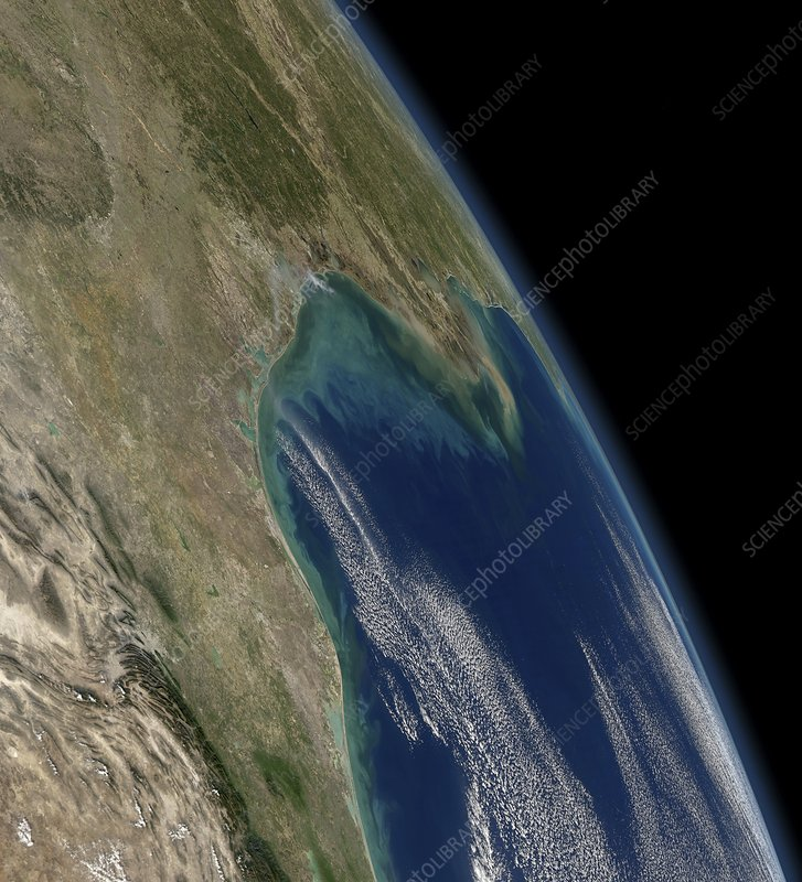 Gulf of Mexico coast, satellite image