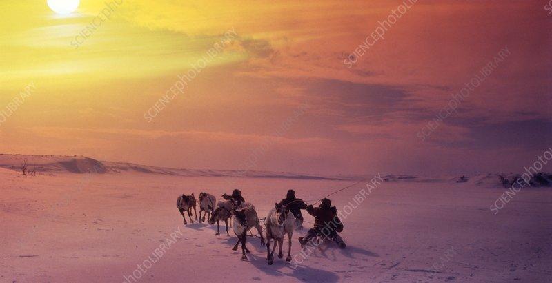 Reindeer herders, Russia