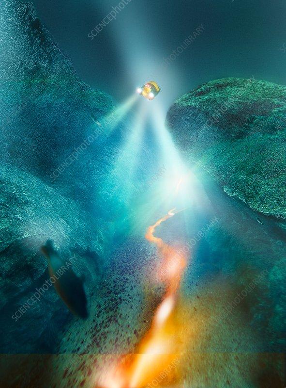 Deep sea exploration, computer artwork
