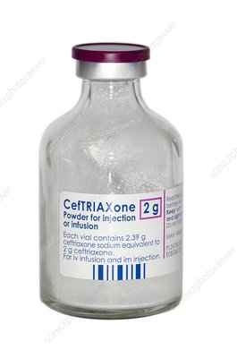 Ceftriaxone antibiotic drug