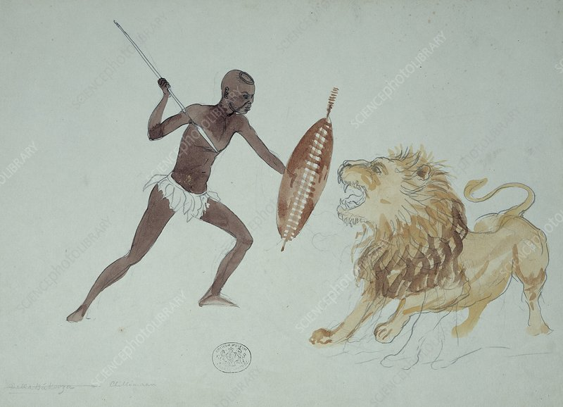 Lion hunting, artwork