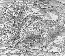 Mythical hybrid creature, 16th century