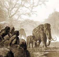 Neanderthals hunting mammoth, artwork